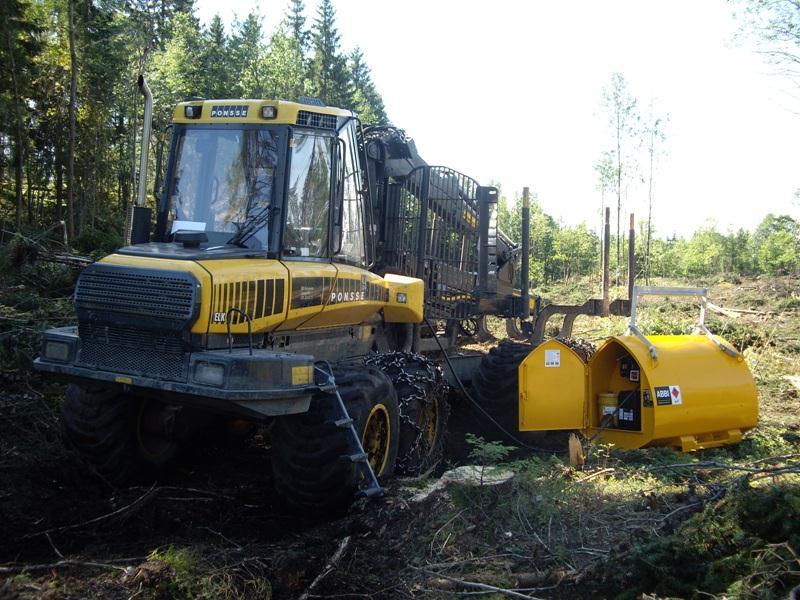 ABBI SS forest